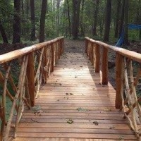 dubový most Veltrusy